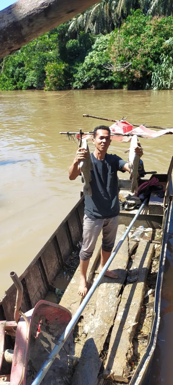 Telusuri Kematian Ribuan Ikan di Batang Sosah,Begini Kata Kadis DLH Rohul